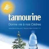 tannourine
